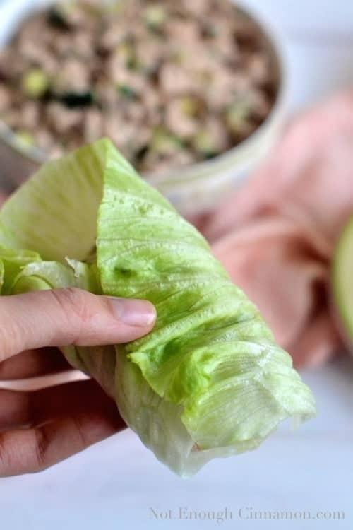 Skinny Tuna Salad in Lettuce Cups - www.notenoughcinnamon.com