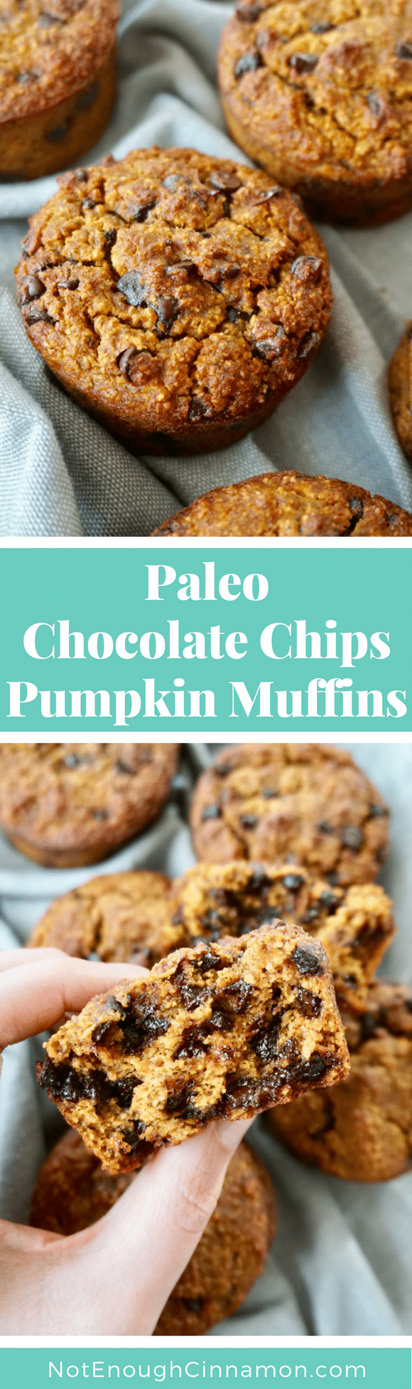 Paleo & Gluten-Free Pumpkin Chocolate Chips Muffins - these fall-inspired muffins are TO DIE FOR! Perfectly moist and so tasty - forget Starbucks and whip up a batch of these divine mini cakes in your kitchen  #muffinrecipes, #paleomuffins, #paleobaking, #pumpkinmuffins