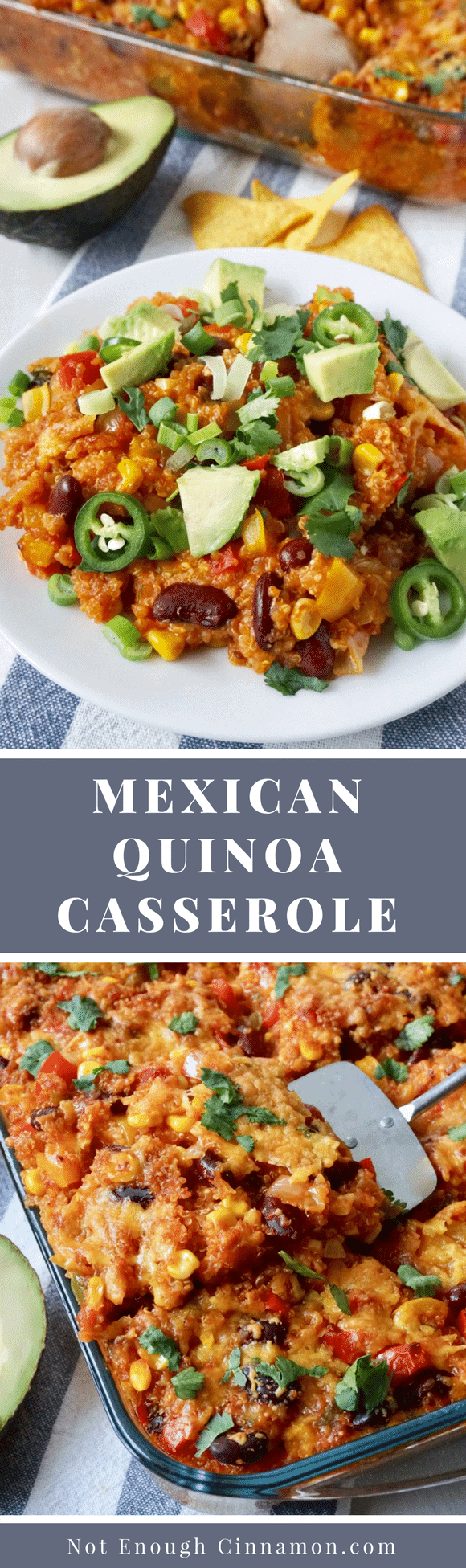 Mexican Quinoa Casserole ( Healthy & Gluten-free) | An easy + healthy quinoa casserole with all your favorite Mexican flavors. Meatless and high in protein, this easy casserole is a nutritional powerhouse! It's naturally gluten free - and freezer friendly too. #casserolerecipes, #quinoarecipes, #mexicanrecipes, #easydinnerrecipes, #cleaneatingrecipes