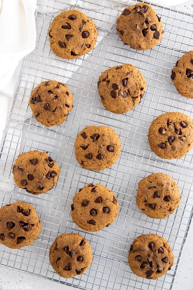 freshly baked chocolate chips protein cookies cooling on a rack